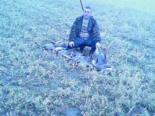 Kaz Avı Görüntüleri