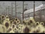 Yaprak Dökümü 172. Bölüm Fragmanı online video izle