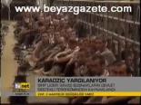 Karadziç'in Savunması