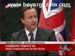 Cameron Türkiye'de