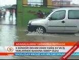 Adana'da sinirler gergin online video izle