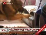 Güldüren uyuşturucu operasyonu! online video izle