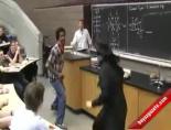 Kimya Dersinde Zorro Süprizi