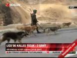 Lice'de kalleş tuzak: 2 şehit online video izle