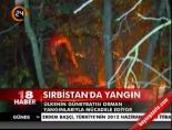 Sırbistan'da yangın