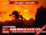 Madrid Ormanları Ateşe Teslim