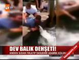 Dev balık dehşeti! online video izle
