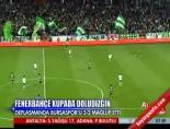 Bursaspor Fenerbahçe: 2-3 Maçın Özeti
