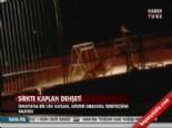 İspanya'da Bir Sirk Kaplanı Bakıcısına Saldırdı