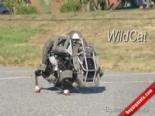 Google'dan Cheetah ve Wildcat İsimli Robot Açılımı