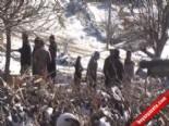 Kardeşini pompalı tüfekle vurarak öldüren zanlı - UŞAK online video izle