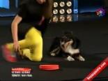 İrem Ve Cash  - Gangnam Style Dansı Yapan Köpek (Yetenek Sizsiniz Türkiye ) İzle