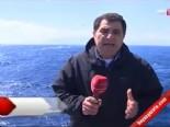 Anadolu Yıldızı 2013