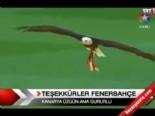 Teşekkürler Fenerbahçe!