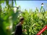 Pis Yedili Dizisi online video fragman izle, Pis Yedili 83. Bölüm Fragmanı