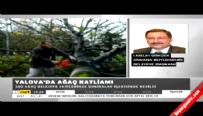 Gökçek'ten CHP'ye ağaç tepkisi