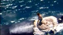 Çılgın Avustralyalı Genç Köpek Balıklarının Ortasına Atladı