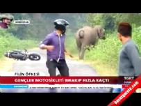 Onlar kaçtı fil kovaladı