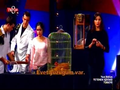 Yetenek Sizsiniz Türkiye Aref Ghafouri İlizyon Gösterisi