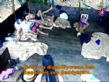 Survivor 2014 Ünlüler Gönüllüler 10. Yeni Bölüm - Turabi Ve Sahra Arasında Yiğit Gerginliği online video izle