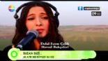Diyarbakır Tanıtım Klibi - 40 ayrı ses ile 'Suzan Suzi'  online video izle