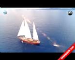 Kanal D'nin Yeni Yarışma Programı ''Alabora'' Çok Yakında Başlıyor  online video izle