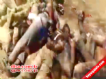 IŞİD Katliamlarına Bir Yenisini Daha Ekledi  online video izle