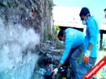 Bursa'da Bin Beşyüz Kapanla Fare Avı