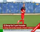 Galatasaray Transfer Haberleri-Listesi (Tarık Çamdal-Dzemaili-Pandev) 1 Eylül 2014 Haberi online video izle