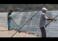 İstanbul / Acemi Balıkçı Oltaya Kendi Düştü