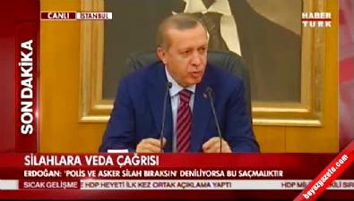 Erdoğan: İki maymunu oynuyorlar
