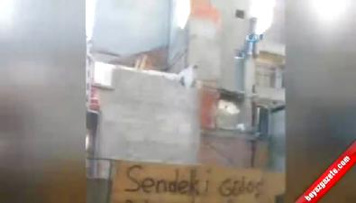 Türk Usulü 'Ölümüne Yıkım' Pes Dedirtti İzle