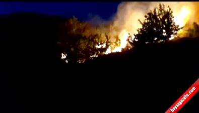 Bodrum'daki yangın halkı tedirgin etti İzle