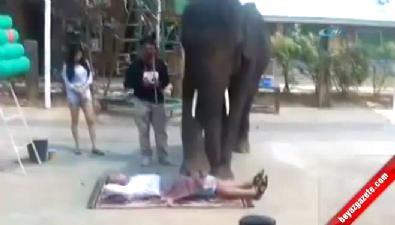 Bu da fil masajı