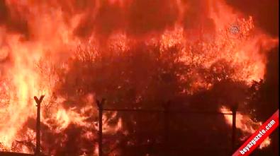İzmir'deki yangın zor kontrol altına alındı Video