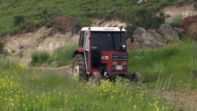 Erzurum'da ayı saldırısına uğrayan kişi öldü