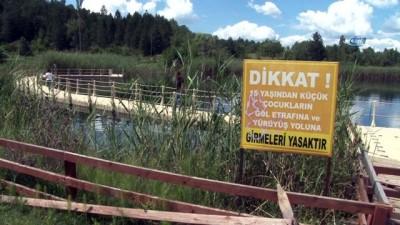 Karagöl'e 30 bin sazan yavrusu daha bırakıldı