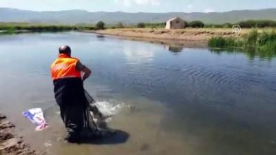 Van'da kaçak avcılıkla mücadele